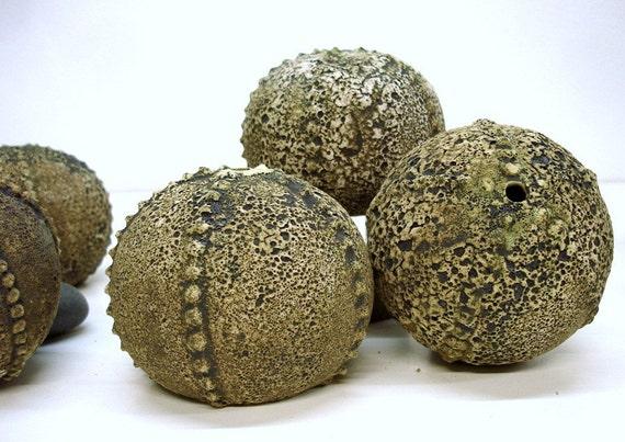 Wheel thrown Ceramic Textured Spike Sea Urchin, smoked fired texture, Nautical, mantle art modern minimalist hostess gift