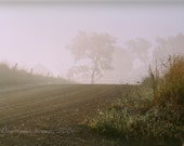 foggy morning, countryside, rural image, art photography, wall decor, simple image, etherial quality,other sizes