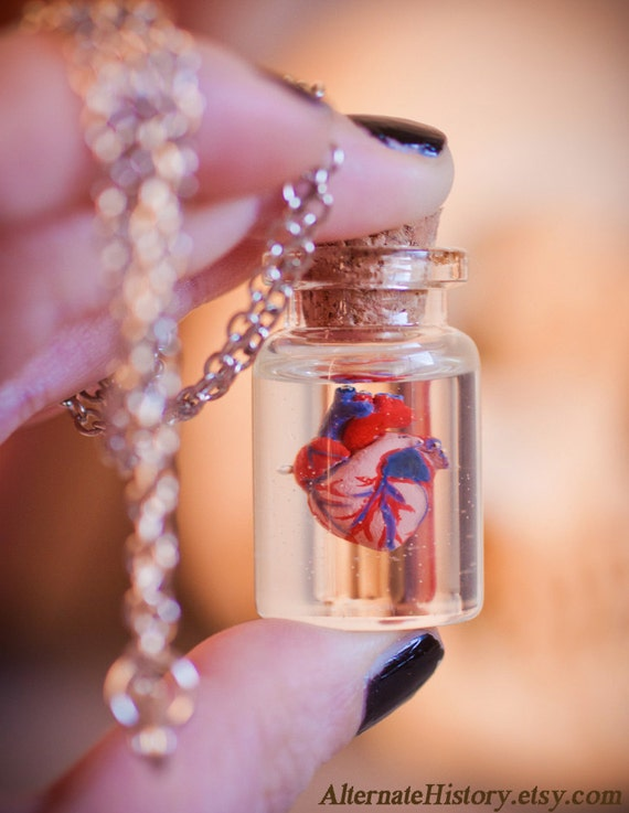 Preserved Human Heart in a Jar - Curiosity Bottle Necklace - Silver tone Chain