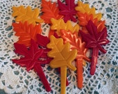 Set of 12 Fall Leaves Cupcake topper picks Thanksgiving