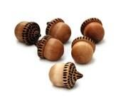 wooden acorns - wood burned