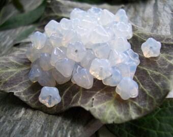 Flower Czech Glass Beads Baby Bell Flower Tiny 4x6mm Crystal Opal (50pcs)