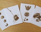 Botanical Art Cards, Series 01 - Sepia Studies