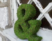 Moss Covered Ampersand - 8 inch
