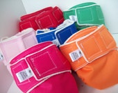 Size Small Organic Cotton All in One Cloth Diaper in Color of Choice