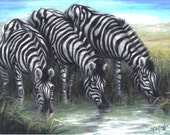 Watering Hole Series- Zebra's