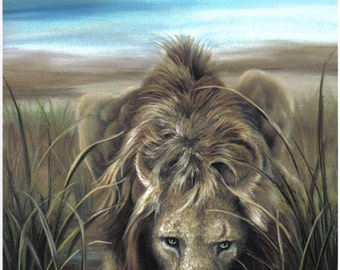 Watering Hole Series- Lion