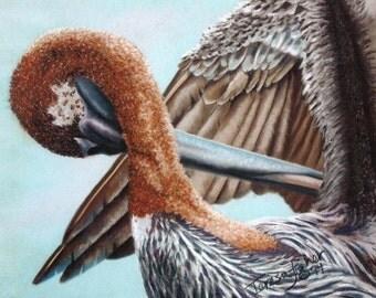 Pelican's Wing