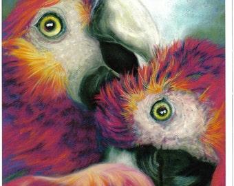 Friendship....Macaw's
