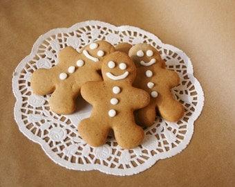 Gingerbread cookie Lebkuchen cookie 8 pieces kekse guezli