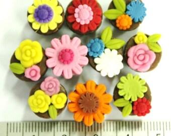 Fancy Cupcakes , set of 10 pieces
