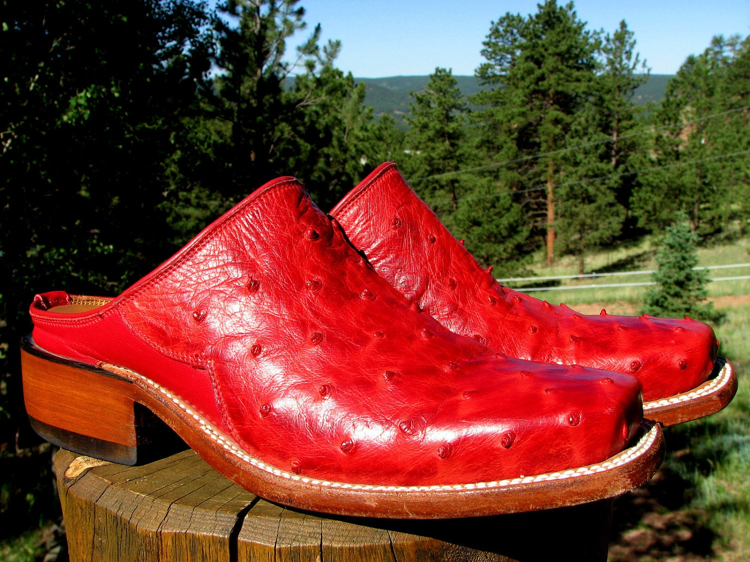 Cowboy Boots Red Ostrich Lucchese Mules Womens Low Heel 6 B