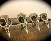 On Sale Metal Bird Skull Cabinet Knobs cast metal. Antique silver plate. Made in NYC