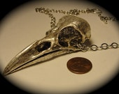 Life Sized Crow Skull Antique Silver Plated on a generous chain Bird Skull Jewelry Made in NYC