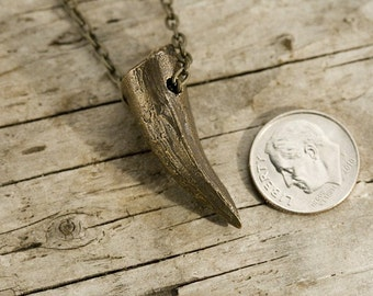 Crocodile Tooth Necklace (cast in solid recycled bronze) on a bronze chain