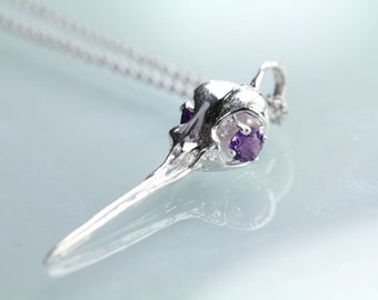 Hummingbird Skull In Sterling Silver Amethyst Gem set eyes on Sterling Chain