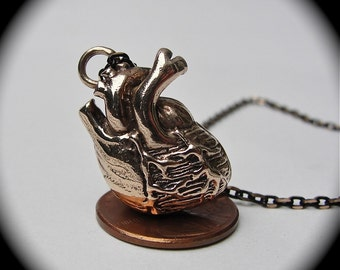 Anatomical heart necklace in solid bronze on a matching chain, Made in NYC