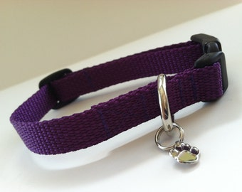 Extra Small Simply Purple Dog Collar