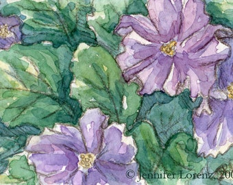 ACEO-African Violets (Print)
