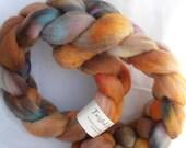 Merino Top Placer colorway 4.2 oz