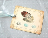 Feathers and blue eggs, 6 tags