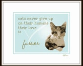 Cats Never Give Up - Print