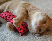 Catnip Body Pillow- Red and Black Paws