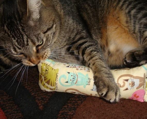 Catnip Body Pillow -Cat Families