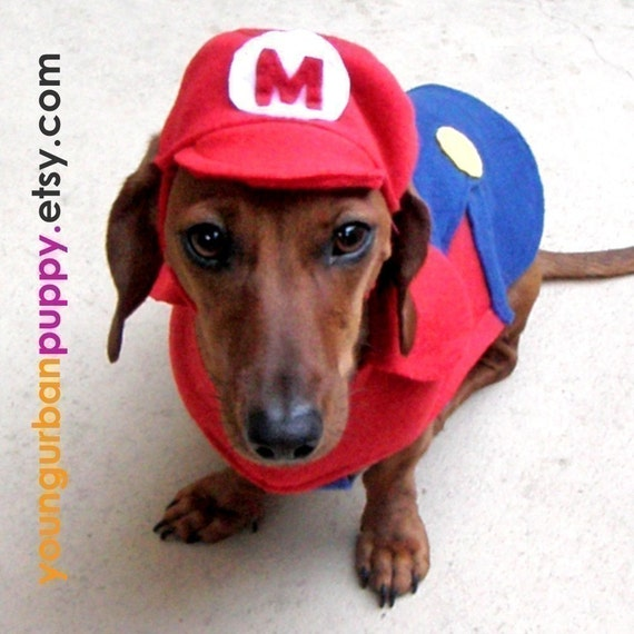 MARIO NINTENDO costume for Dogs