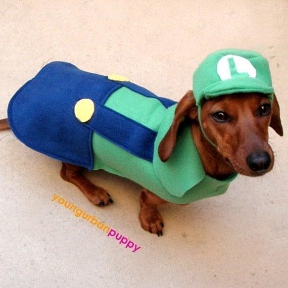 LUIGI NINTENDO Dog Costume