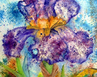 Purple Bearded Iris Original Large Floral Watercolour Painting 28x19.75inches