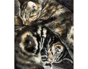 Tabby Cats Watercolor Signed Print (11.75 x 8.25 inches)