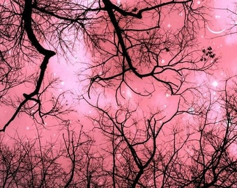 Nature Photography, Pink, Girl Nursery Decor, Black, Pink Trees Print, Moon and Stars, Woodland Nursery