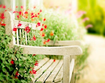Garden Print, Rustic, Nature Photography, Beige, Green, Red, Garden Bench, Shabby Chic Summer