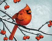 8x10 illustration print: Tis the Season (red cardinal bird on snowy branches with berries)