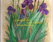 Note Cards - Iris Garden