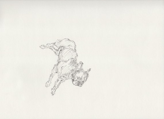 simulacrum / pen drawing / 9 H x 12 W inches / may 2012