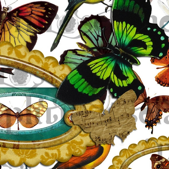 Digital Collage Sheet - wing, butterfly, frame, bird - print yourself - Instant Download