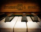 Piano Photograph - ivory keys, close up, black, white, brown