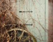 Rustic Door Photograph, Farmhouse Door Print, Rustic Country Decor, Old Wagon Wheel, Rustic Grape Vines