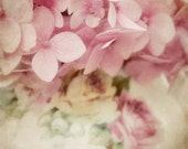 Pink Flower Photo - vintage, antique, pale, soft, dreamy, vase, flower photograph 8x12