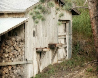 Old Barn Photograph - Shed, Grey, Gray, Farm, Prairie - The Old Grey Shed