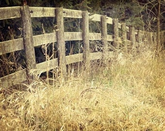 Rustic Home Decor, Country Fence Photo, Pasture Fence Photograph, Woodland Fence, Farmhouse Decor, Rustic Country Wall Art 8x10