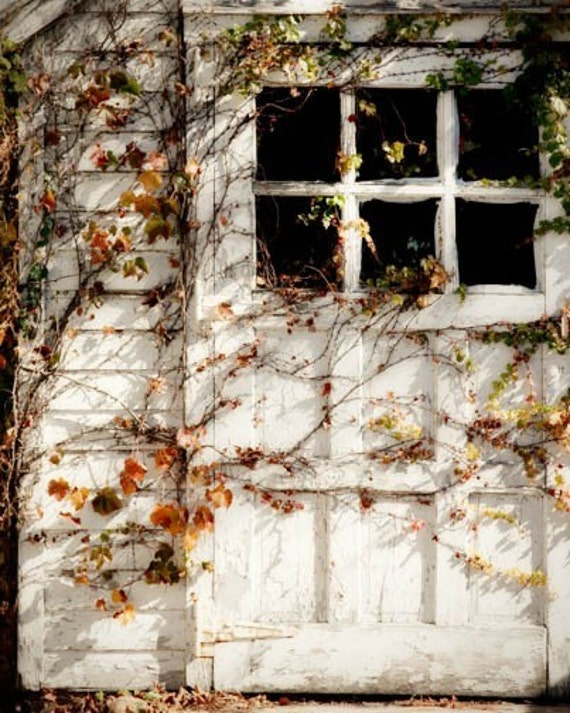 Country Cottage Photo autumn white rustic barn vines leaves fall home decor quaint 8x10 farmhouse cottage chic white door