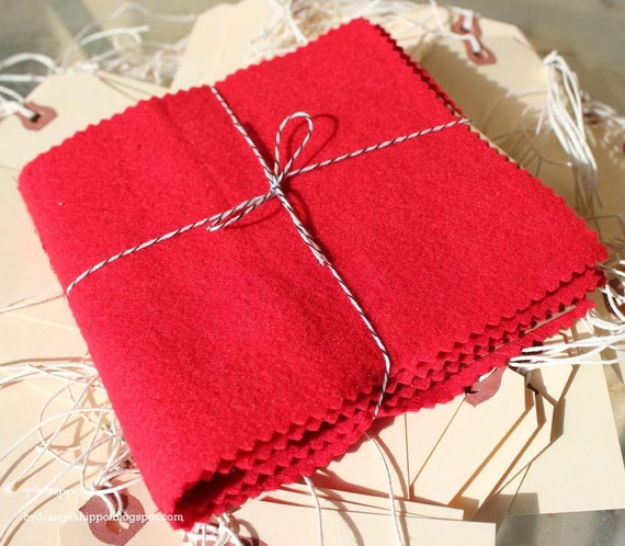 Red Felt and Paper Bag Book - 24 Pages, pinked edges, super cute