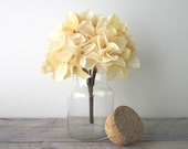 Glass Canister Apothecary Jar with Cork Lid