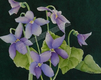 "violets watercolor painting archival print 5"" x 7"" by Carol Sapp"