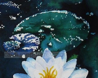 water lily painting moonlit water lily archival print