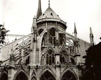 Notre Dame Paris photography