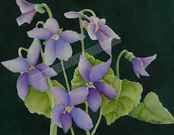 violets watercolor painting archival print by Carol Sapp